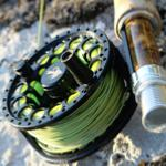 Fly Fishing Beginners Guide Fly Reels