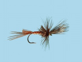 Turrall Mayfly Brown Drake Cripple - Ma08