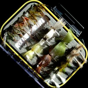 Turrall Fly Pod Mayfly Selection - FPOD15